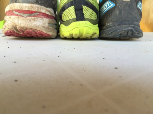 Trio_Ankle